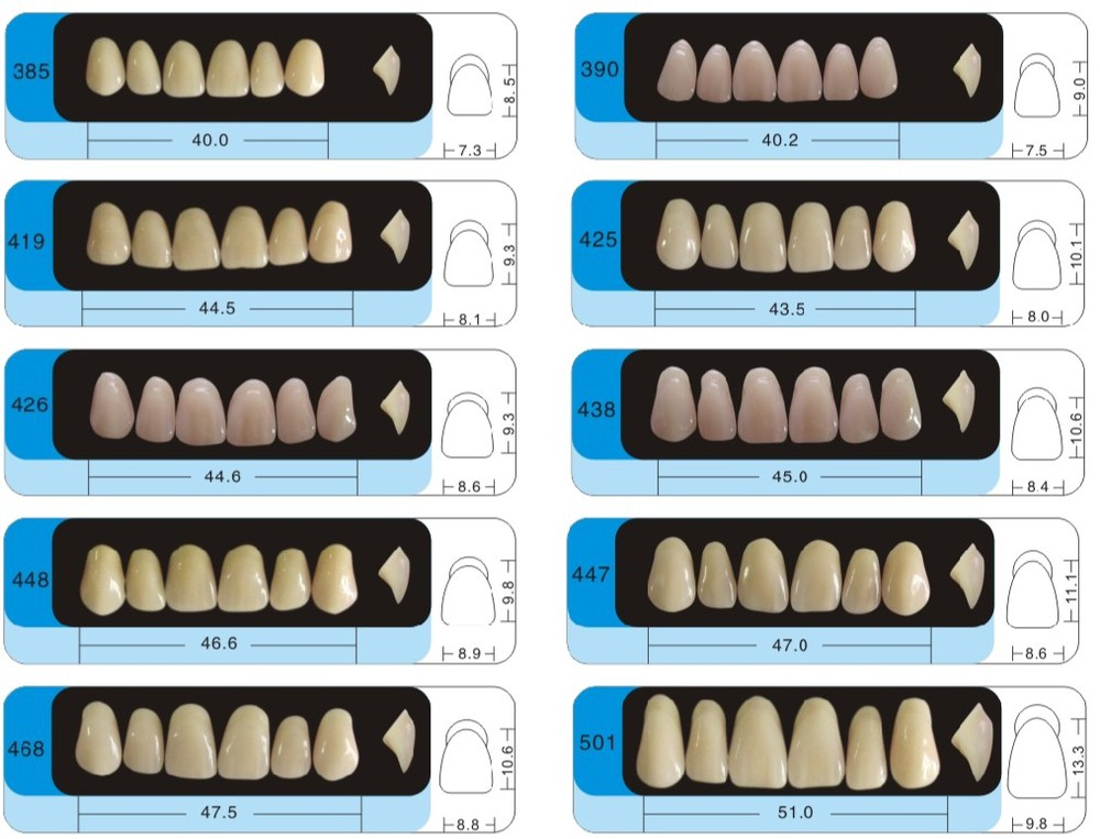 Three layers dental false teeth with CE and ISO