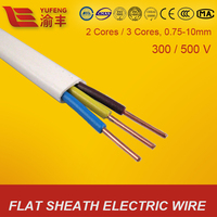 IEC Standard CCC Certified Electrical Wire Flat Cable