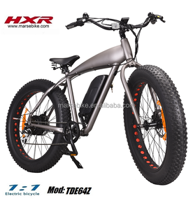 Halley 26 inch tire 500W snow beach electric fat bike