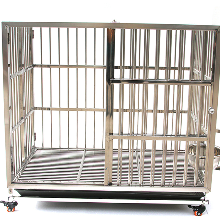 Most Popular Pet Display Cage