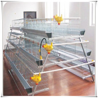 A type Multi-Tier Chicken Layer Coop/chicken cage