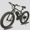 2017 New design cheap price fat tire mountain electric bike