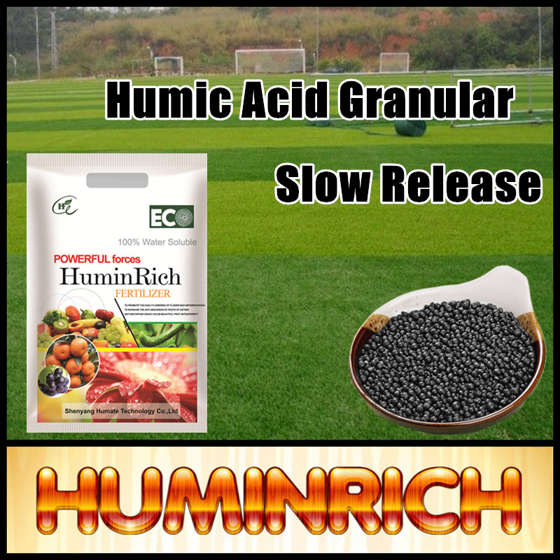 Huminrich High Nutrient Content Bamboo Fertilizer Amino Acid Coated Granulated Humic Acid