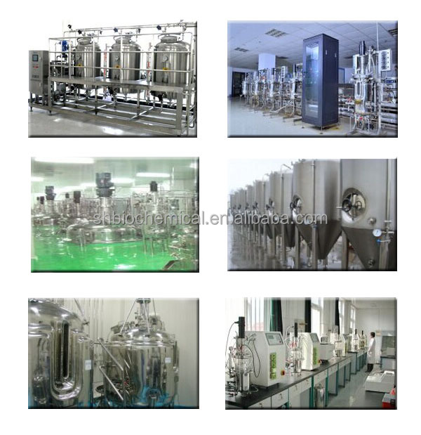 CE Certification and Fermenting Equipment Processing