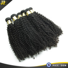 Pretty 100% Virgin Human Hair Kinky Curly Indian Hairpieces For Black Women