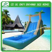 2015 Giant inflatable water slide,climbing dry slide inflatable