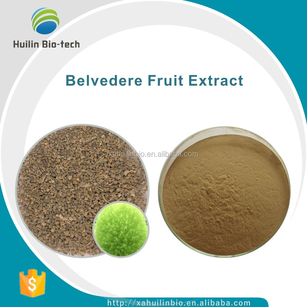 Free Sample 10:1, Belvedere Fruit P.E./Belvedere Fruit Extract Powder