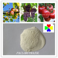 retardant paclobutrazol 95%TC 90%TC in controling the overgrowth of plant