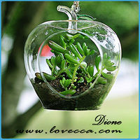 2015 Apple Shape Fashional hanging glass vases, air plant glass terrarium, decorative hanging glass vases for flowers