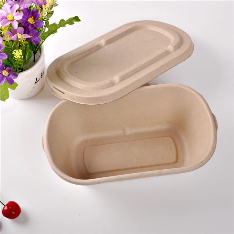 Packing Box For Fast Food Take Away Office Transparent Lunch box