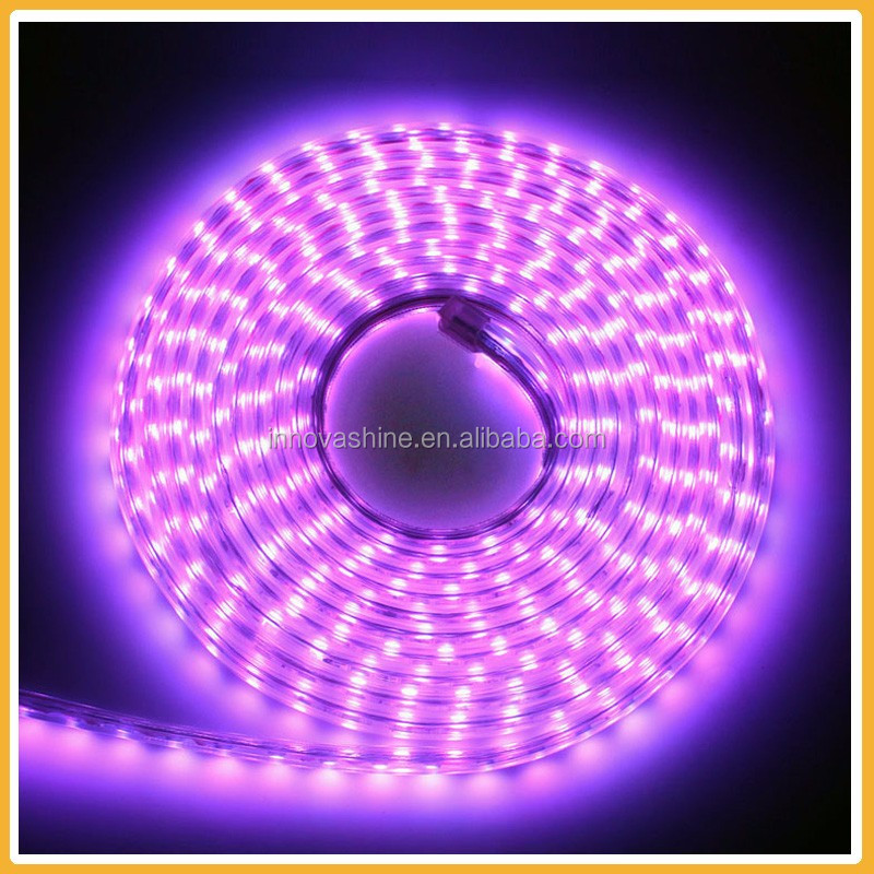 Waterproof 220v RGB strip rope ribbon led ceiling lights price in pakistan from Zhongshan