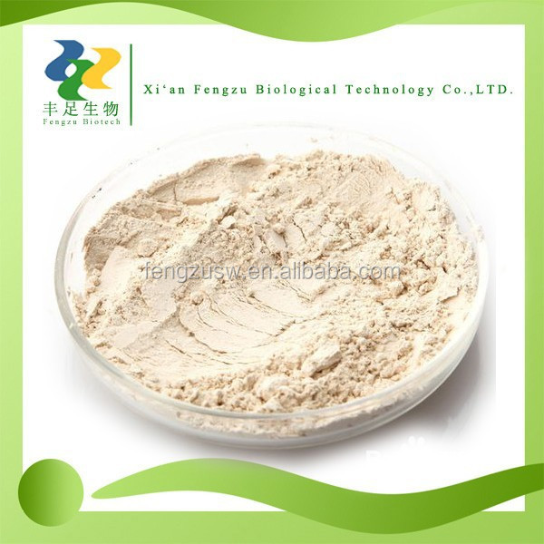 High Quality Pure Yeast Extract Powder, Free Sample Brewers Yeast Powder, Nutritional Yeast Powder