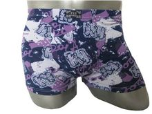 Exciting flossy mens boxer trunks
