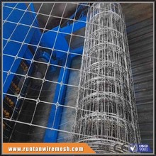 Long life hot dip galvanized fixed knot woven wire deer farm fencing