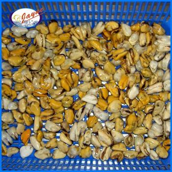 Frozen whole cooked blue mussels with 1Kg/Bag or 10Kg/CTN Bulk Package