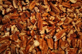 Texas Pecan Pieces in Shell Wholesale