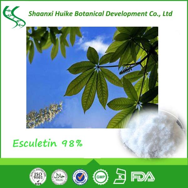 Factory supply horse chestnut extract Esculetin horse chestnut extract powder