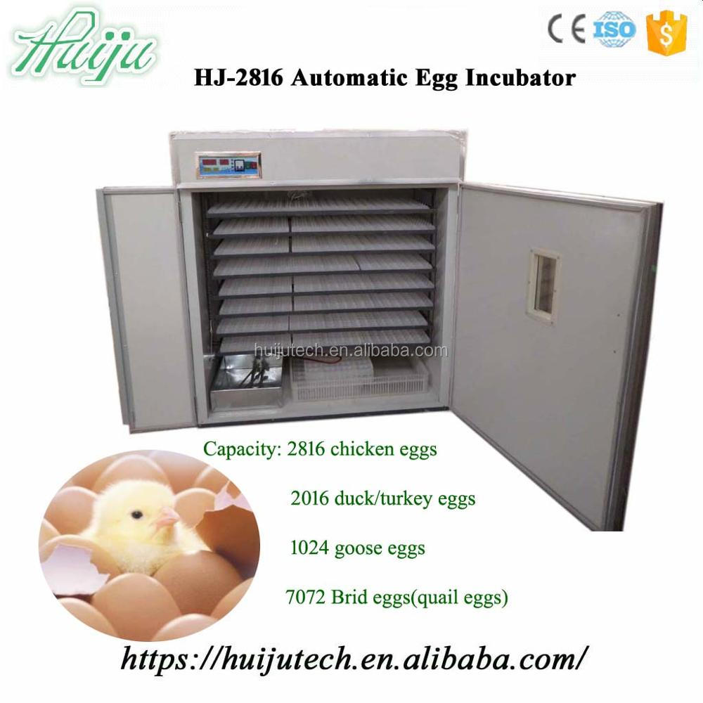 2800 chicken eggs capacity automatic egg incubator HJ-2816