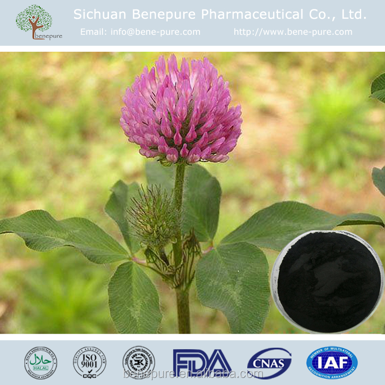 Natural Red Clover extract Powder CAS 485-72-3 Formononetin ISOFLAVONE