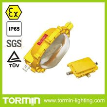 MH Explosion proof emergency flood light