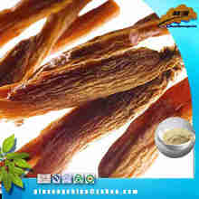 Low Pesticide dried panax red ginseng powder extract oral liquid best sell