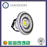High Quality Long Term Lumen Maintainance Long lifespan LED Explosion Proof Flood Lights