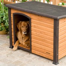 Factory good quality wooden dog kennel with flat roof
