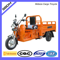 SBDM Motorized Motorcycle Truck 3-Wheel Tricycle