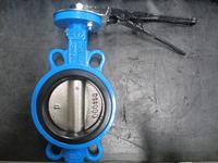 JIS 10K Cast Iron Butterfly Valves Wafer Type Made in China