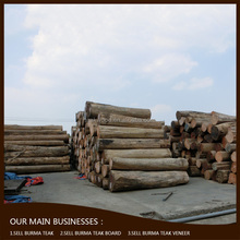 Professional factory supply durable and stable authentic burma teak wood price