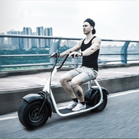 Hot electric motorcycle smart self balancing scooter large lithium-ion battery electric trike