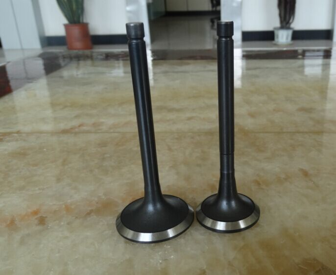 engine parts for Toyota 1KZ, engine valves