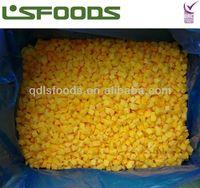 IQF yellow peach dices 2013 last batch