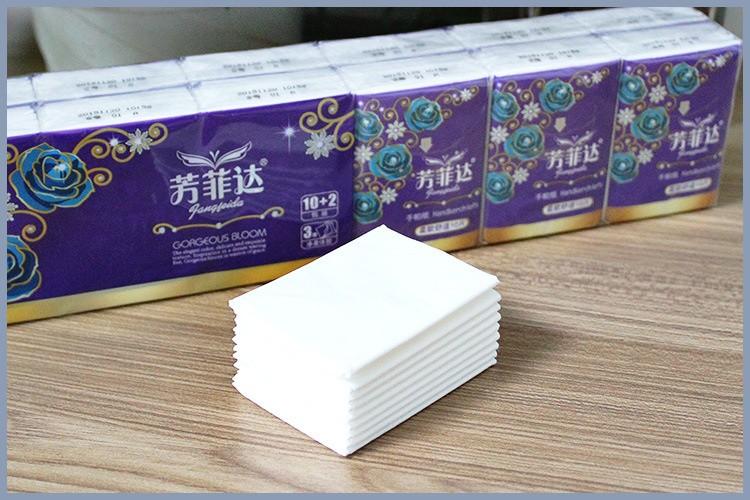 Pocket Tissue3-07