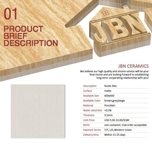 Matt ceramic tiles from JBN/ CHINA