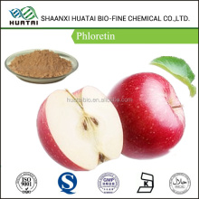 organic red apple extract Phenols product Phloretin 50% powder