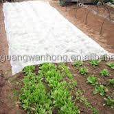 garden or agriculture or plants or fruit or weed or corn or srawberry using100% PP spunbond nonwoven fabric