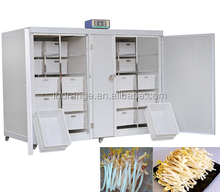 Healthy Automatic green bean sprouting machine for sale/+86 181 3725 1982