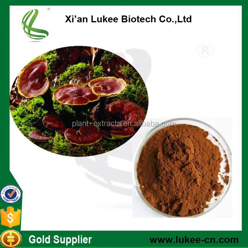 Best quality Reishi Mushroom Extract ( Ganoderma Lucidum Extract) , Red Reishi
