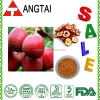 100% Nature Hawthorn Fruit P.E./Hawthorn Flavone 5%-98% by HPLC