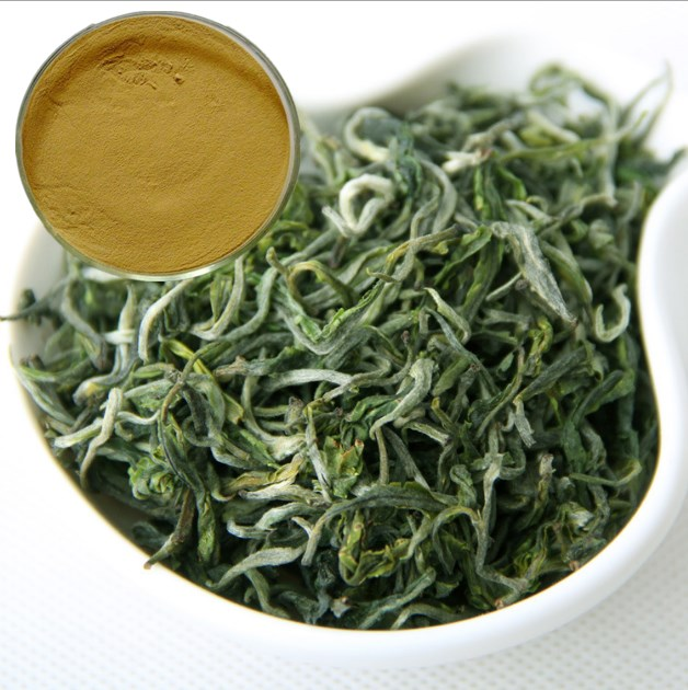 high quality 100% Natural Polyphenol 20%-98% black green tea extract