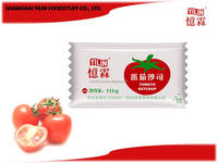10g OEM ODM top sell tomato ketchup made in China