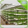 Hydroponics NFT System Vertical Type
