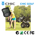 2016 NEW Product CHIC GOLF gas scooter stand up