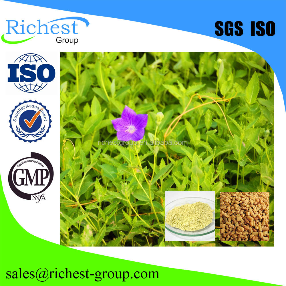 High quality Natural Fenugreek extract