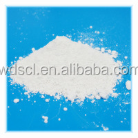 China Clay/ Kaolin Powder for Paint and Rubber/Ball Clay