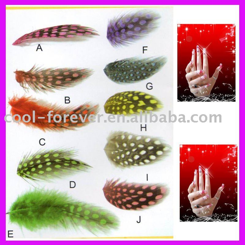 Color feathers for Nail Art Decoration