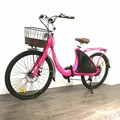 Lark electric bicycle 36V 48V with city tire road bike from factory