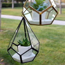 Pear shape glass geometric terrarium plants vase
