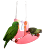 Acrylic Parrot See Saw Bird Swing